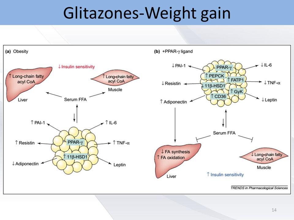 Glitazones-Weight gain 14