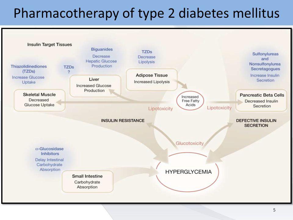 Pharmacotherapy of type 2 diabetes mellitus 5