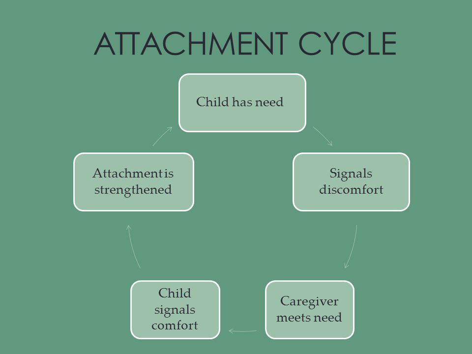 ATTACHMENT CYCLE Child has need Signals discomfort Caregiver meets need Child signals comfort Attachment is strengthened