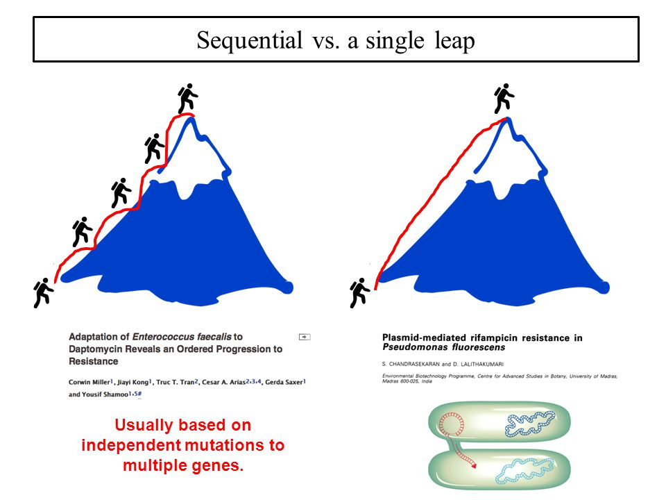 Sequential vs. a single leap Usually based on independent mutations to multiple genes.