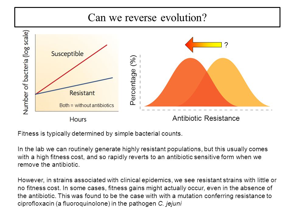 Can we reverse evolution. Percentage (%) Antibiotic Resistance .