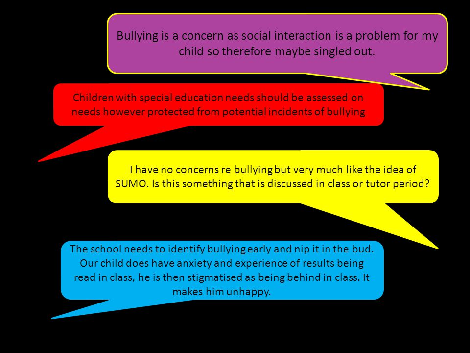 Children with special education needs should be assessed on needs however protected from potential incidents of bullying I have no concerns re bullying but very much like the idea of SUMO.