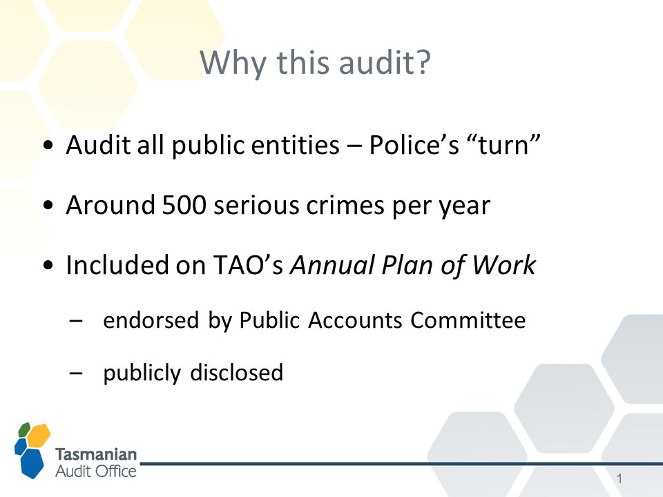 1 Why this audit.