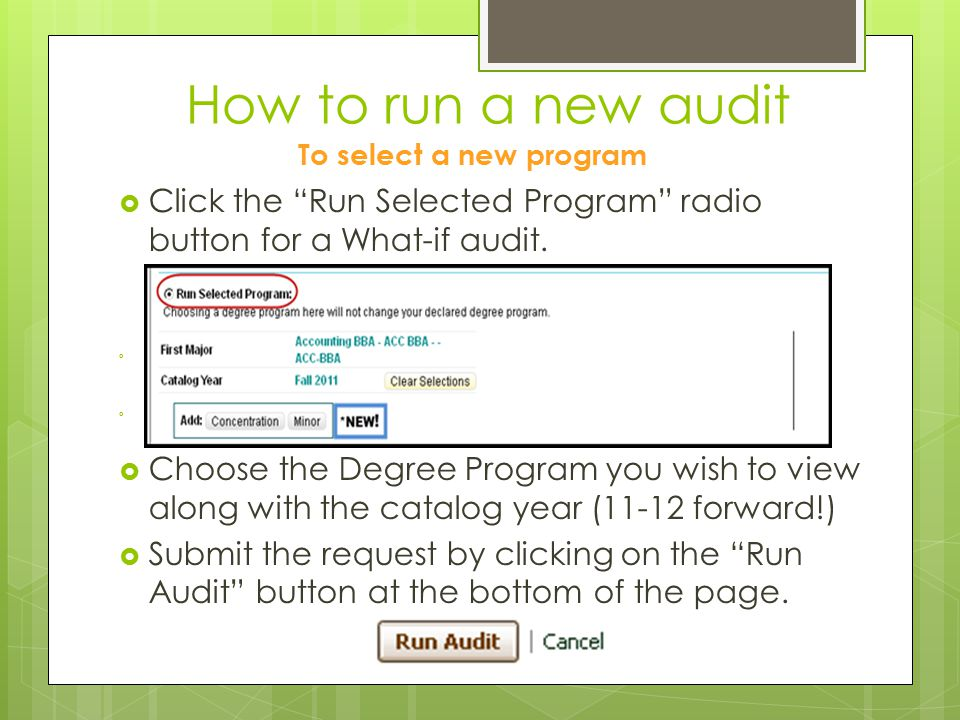 How to run a new audit To select a new program  Click the Run Selected Program radio button for a What-if audit.