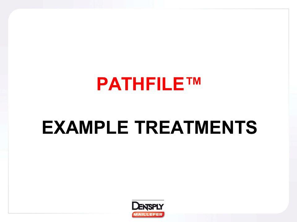 PATHFILE™ EXAMPLE TREATMENTS