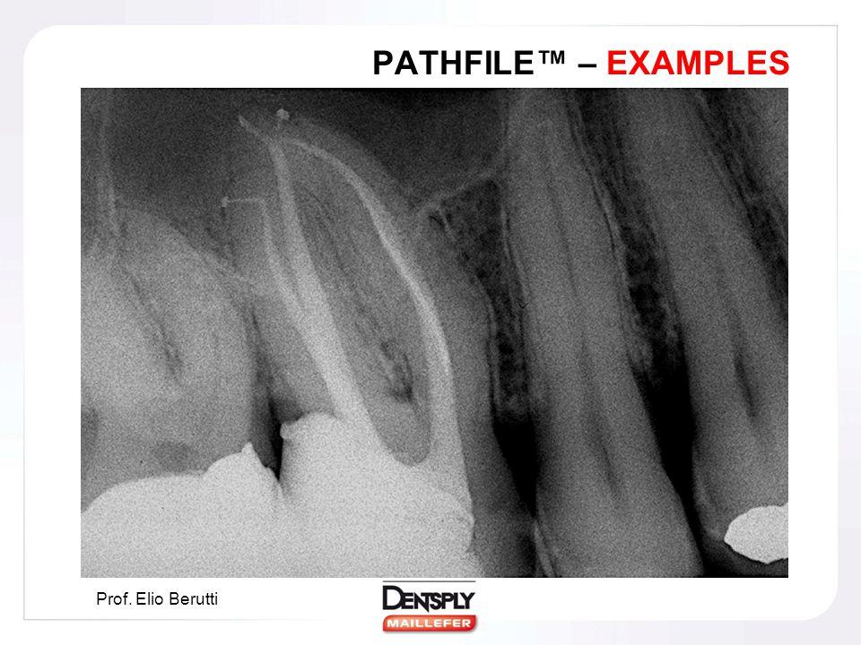 PATHFILE™ – EXAMPLES Prof. Elio Berutti