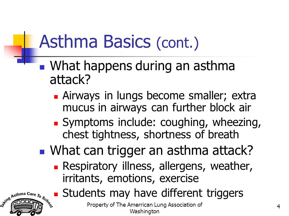 Property of The Amerrican Lung Association of Washington 4 Asthma Basics (cont.) What happens during an asthma attack? Airways in lungs become smaller