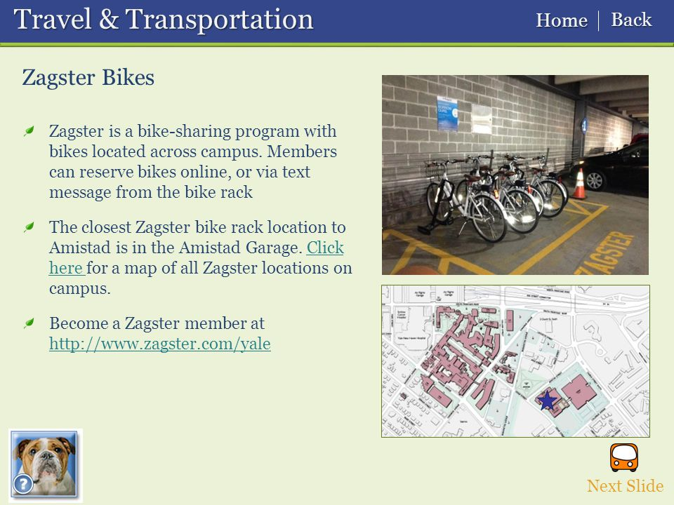 Zagster Bikes Next Slide Travel & Transportation Travel & Transportation Home Home Back Back Zagster is a bike-sharing program with bikes located across campus.