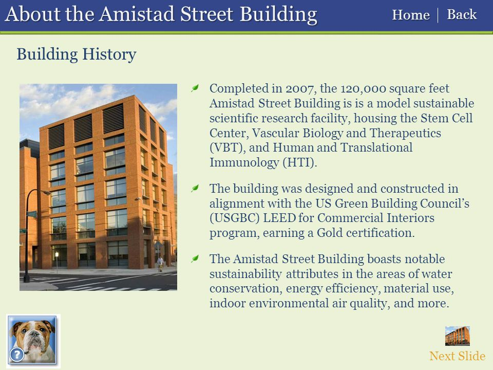 Building History About the Amistad Street Building Next Slide Completed in 2007, the 120,000 square feet Amistad Street Building is is a model sustainable scientific research facility, housing the Stem Cell Center, Vascular Biology and Therapeutics (VBT), and Human and Translational Immunology (HTI).