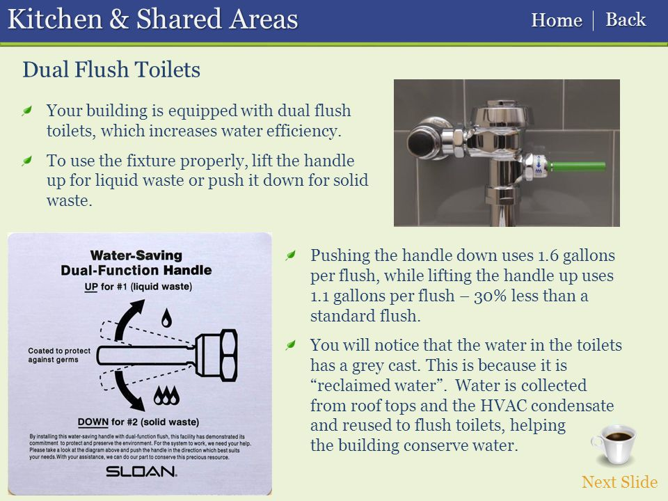 Dual Flush Toilets Kitchen & Shared Areas Next Slide Pushing the handle down uses 1.6 gallons per flush, while lifting the handle up uses 1.1 gallons per flush – 30% less than a standard flush.