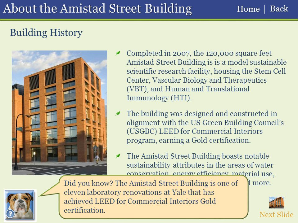 Building History About the Amistad Street Building Completed in 2007, the 120,000 square feet Amistad Street Building is is a model sustainable scientific research facility, housing the Stem Cell Center, Vascular Biology and Therapeutics (VBT), and Human and Translational Immunology (HTI).