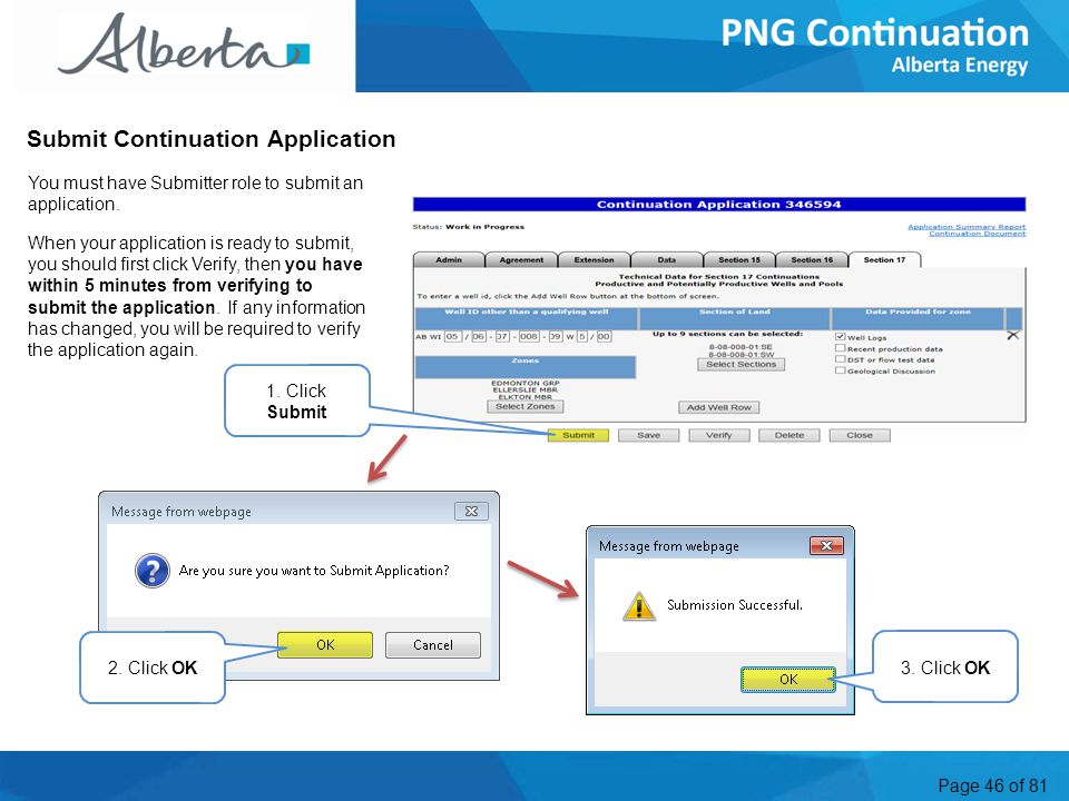 Page 46 of 81 Submit Continuation Application You must have Submitter role to submit an application.