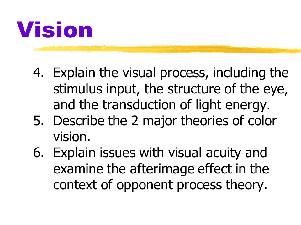 Vision- Stabilized Images on the Retina