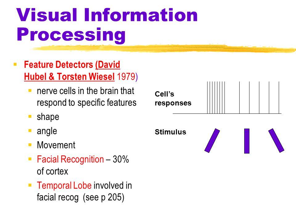 Vision  Far Nearsighted Normal (Short eyeball) ( Long eyeball) 