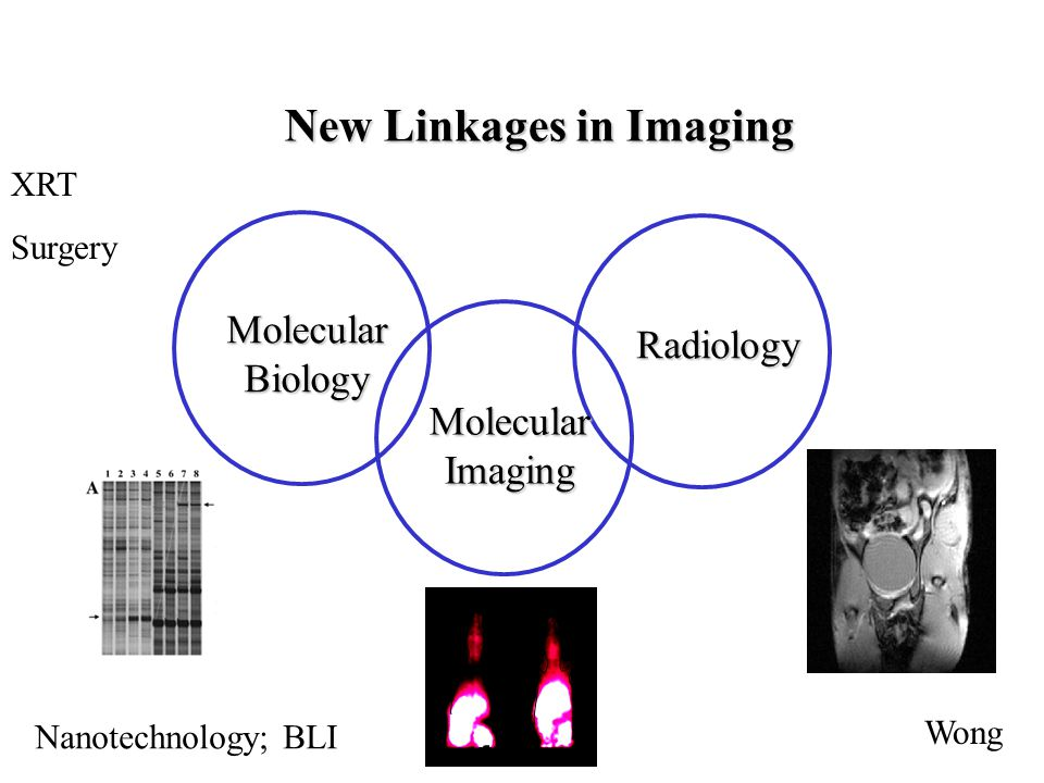 New Linkages in Imaging MolecularBiology Radiology MolecularImaging XRT Surgery Nanotechnology; BLI Wong