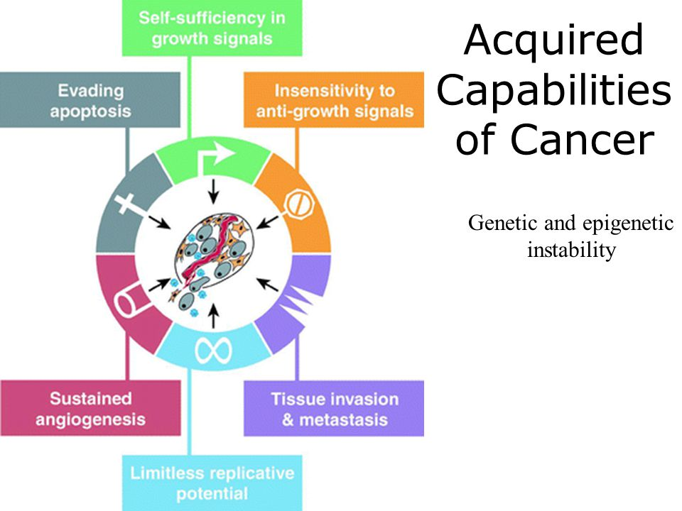 Acquired Capabilities of Cancer Genetic and epigenetic instability