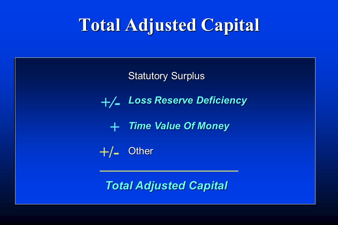 Total Adjusted Capital Statutory Surplus Loss Reserve Deficiency +/- Time Value Of Money + Other +/-