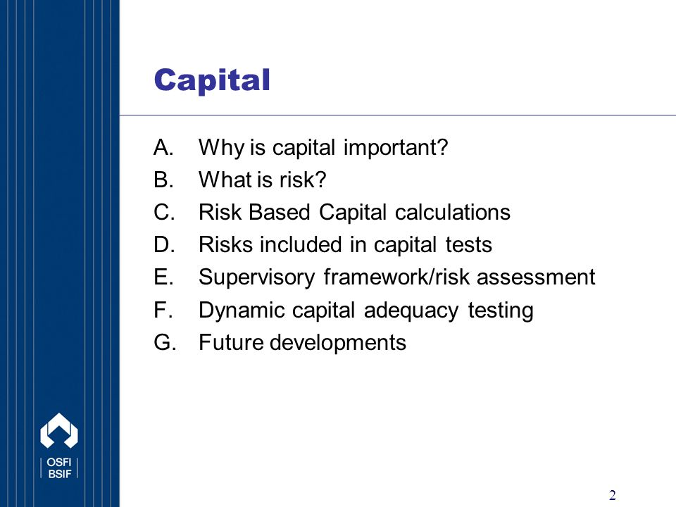 2 Capital A.Why is capital important. B.What is risk.