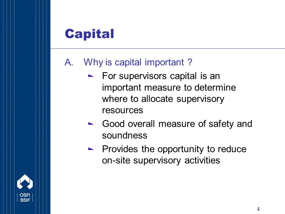 5 Capital A.Why is capital important .