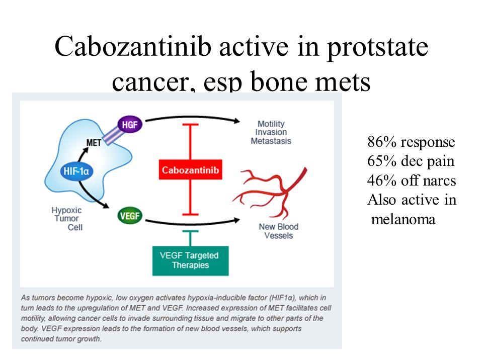 Cabozantinib active in protstate cancer, esp bone mets 86% response 65% dec pain 46% off narcs Also active in melanoma