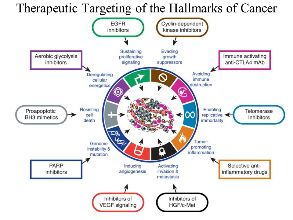 Therapeutic Targeting of the Hallmarks of Cancer