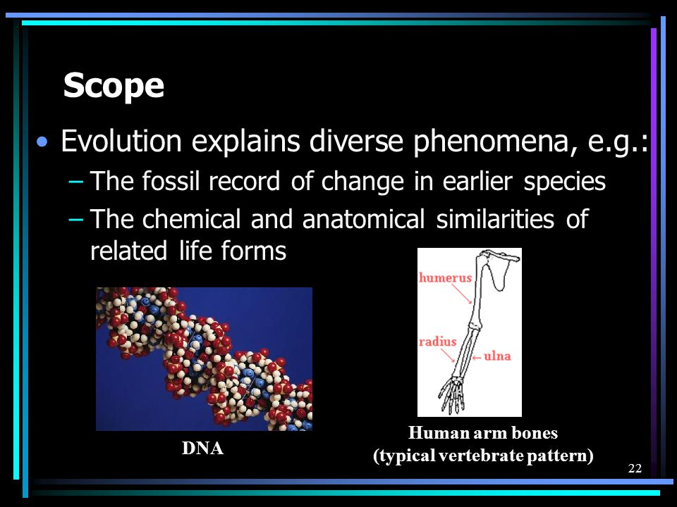 22 Scope Evolution explains diverse phenomena, e.g.: –The fossil record of change in earlier species –The chemical and anatomical similarities of rela
