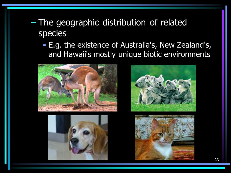 23 –The geographic distribution of related species E.g. the existence of Australia's, New Zealand's, and Hawaii's mostly unique biotic environments