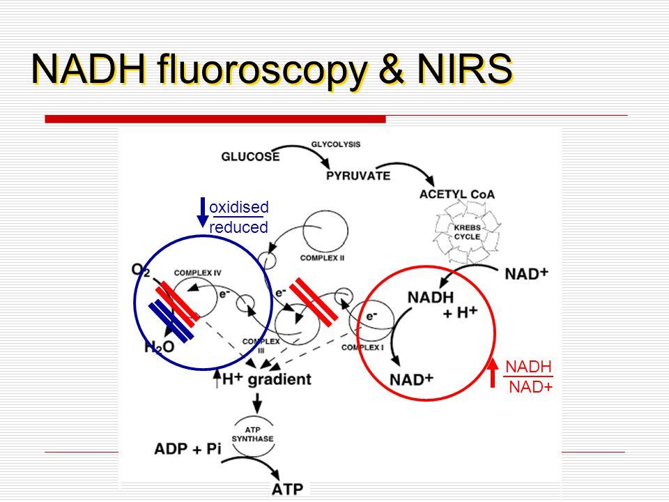 NADH fluoroscopy & NIRS NADH NAD+ oxidised reduced