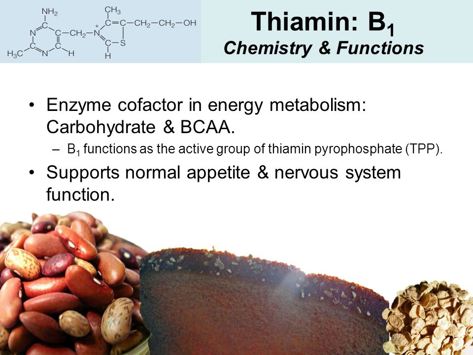 Thiamin: B 1 Chemistry & Functions Enzyme cofactor in energy metabolism: Carbohydrate & BCAA. –B 1 functions as the active group of thiamin pyrophosph