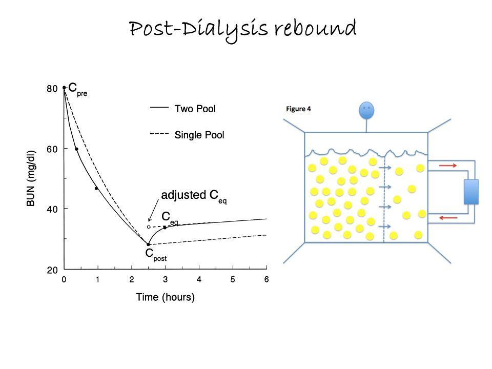 Post-Dialysis rebound