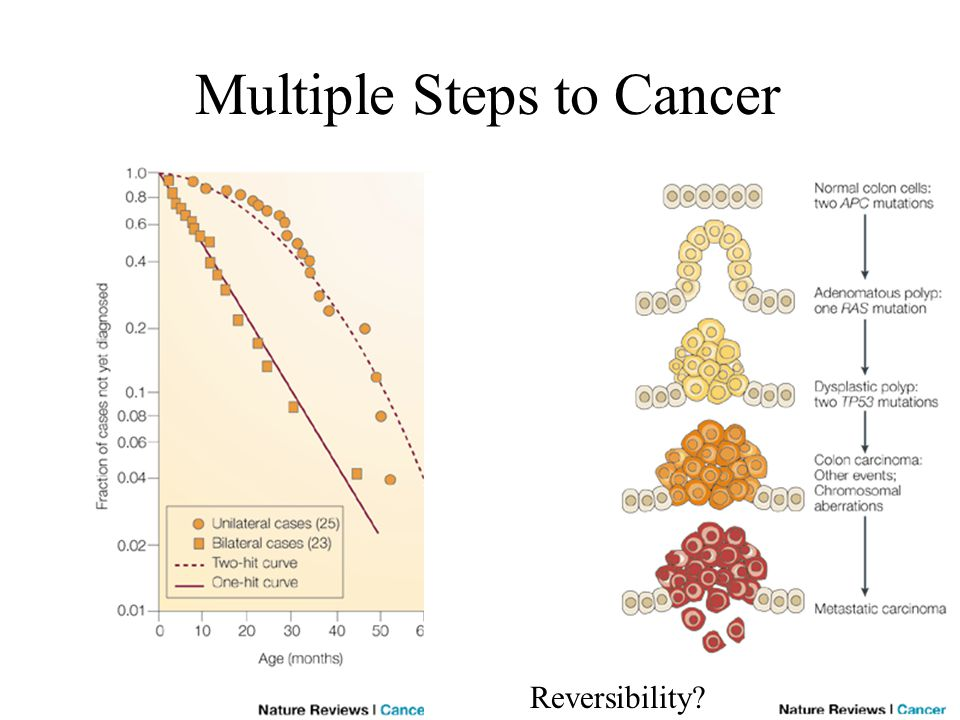 Multiple Steps to Cancer Reversibility