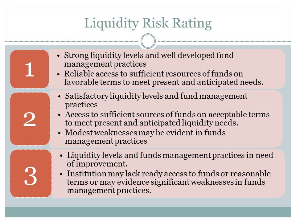 Liquidity Risk Rating Strong liquidity levels and well developed fund management practices Reliable access to sufficient resources of funds on favorab