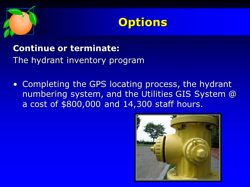 Options Continue or terminate: The hydrant inventory program Completing the GPS locating process, the hydrant numbering system, and the Utilities GIS