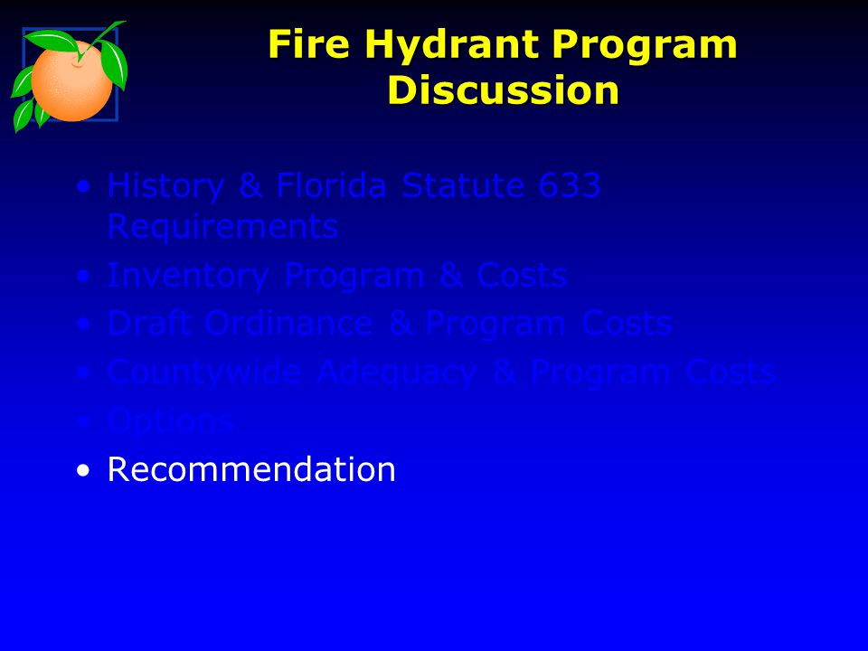 Fire Hydrant Program Discussion History & Florida Statute 633 Requirements Inventory Program & Costs Draft Ordinance & Program Costs Countywide Adequacy & Program Costs Options Recommendation