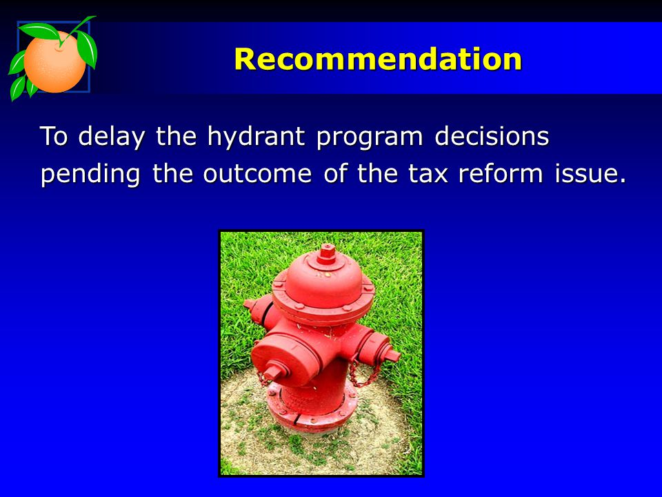 Recommendation To delay the hydrant program decisions pending the outcome of the tax reform issue.