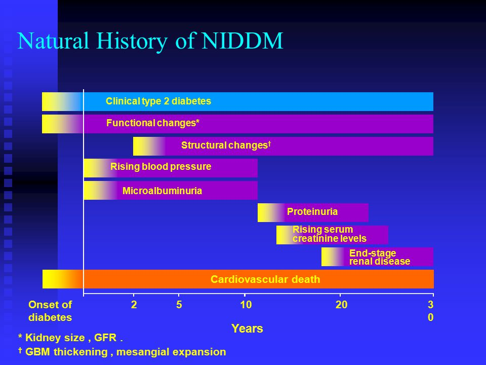 Functional changes* Natural History of NIDDM Proteinuria End-stage renal disease Clinical type 2 diabetes Structural changes † Rising blood pressure Rising serum creatinine levels Cardiovascular death Microalbuminuria Onset of diabetes 2510203030 Years * Kidney size , GFR  † GBM thickening , mesangial expansion 