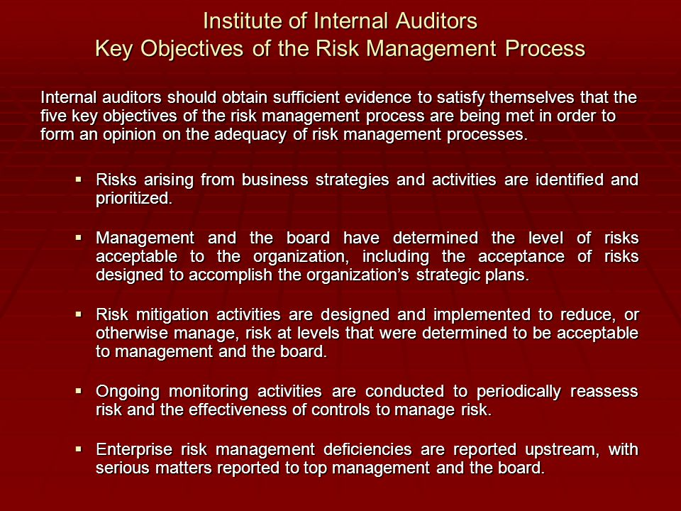 Institute of Internal Auditors Key Objectives of the Risk Management Process Institute of Internal Auditors Key Objectives of the Risk Management Proc