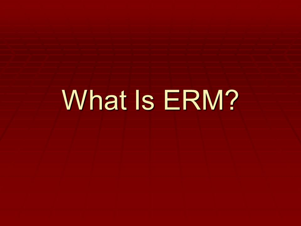 What Is ERM?