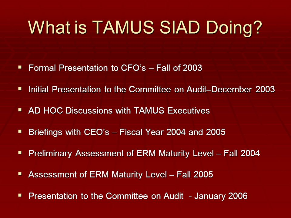 What is TAMUS SIAD Doing?  Formal Presentation to CFO's – Fall of 2003  Initial Presentation to the Committee on Audit–December 2003  AD HOC Discus