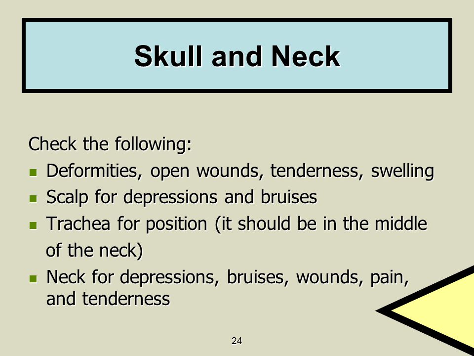 24 Skull and Neck Check the following: Deformities, open wounds, tenderness, swelling Deformities, open wounds, tenderness, swelling Scalp for depress