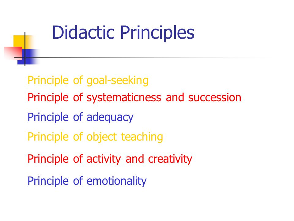 Didactic Principles Principle of goal-seeking Principle of systematicness and succession Principle of adequacy Principle of object teaching Principle