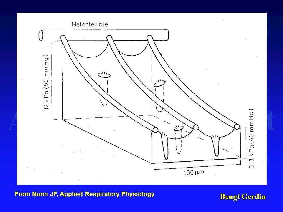Bengt Gerdin From Nunn JF, Applied Respiratory Physiology