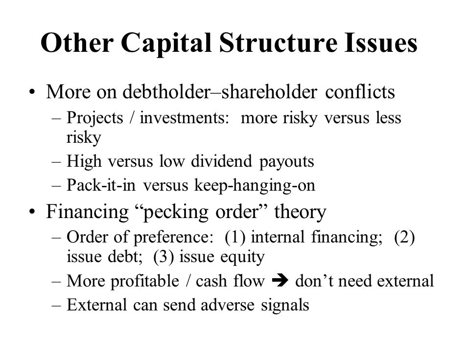 Other Capital Structure Issues More on debtholder–shareholder conflicts –Projects / investments: more risky versus less risky –High versus low dividen
