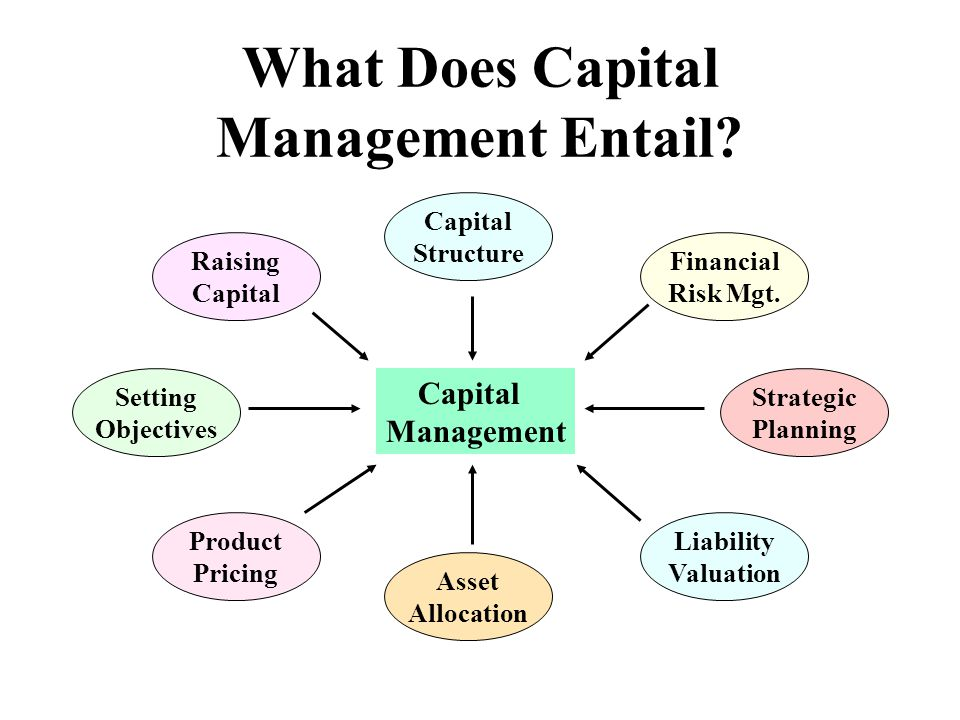 What Does Capital Management Entail? Capital Management Capital Structure Financial Risk Mgt. Setting Objectives Raising Capital Strategic Planning Li