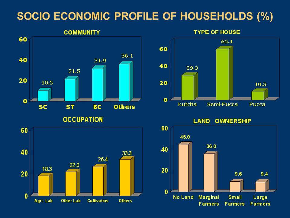 SOCIO ECONOMIC PROFILE OF HOUSEHOLDS (%)