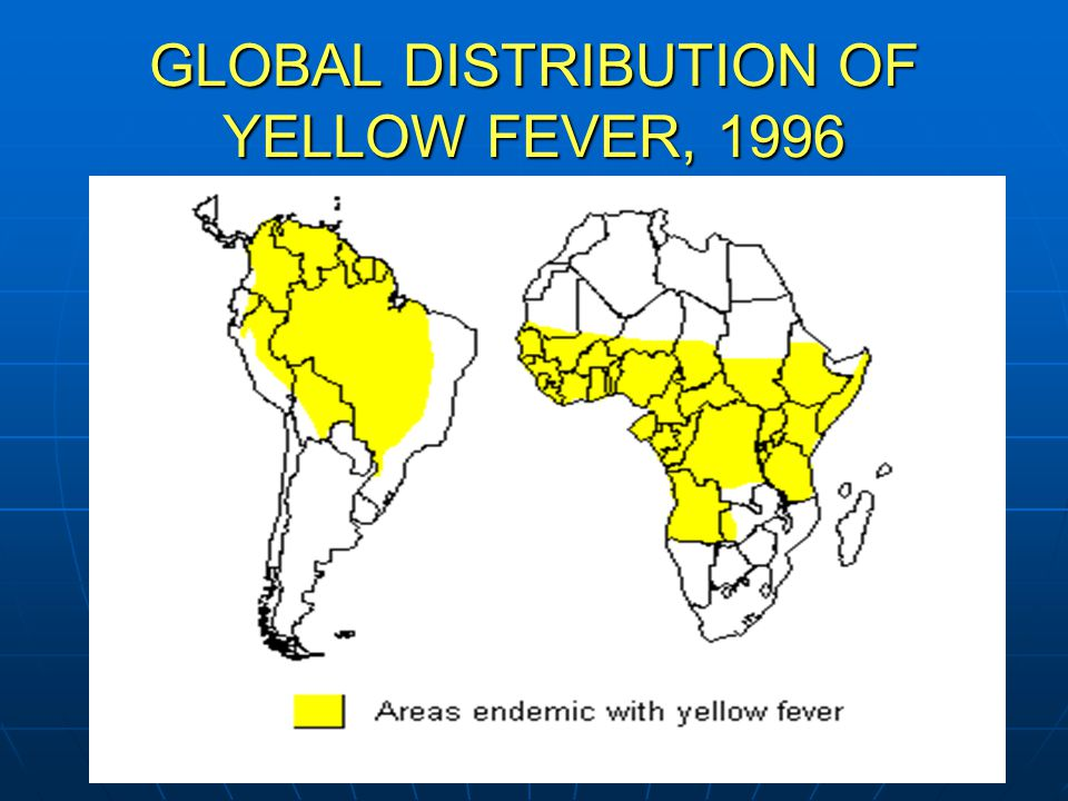 NY/NJ AETC Stuart Haber, MD GLOBAL DISTRIBUTION OF YELLOW FEVER, 1996
