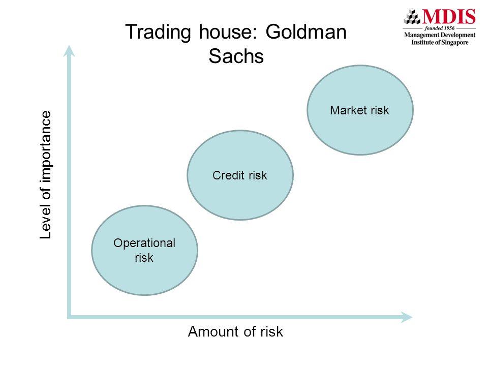 Market risk Level of importance Trading house: Goldman Sachs Amount of risk Credit risk Operational risk
