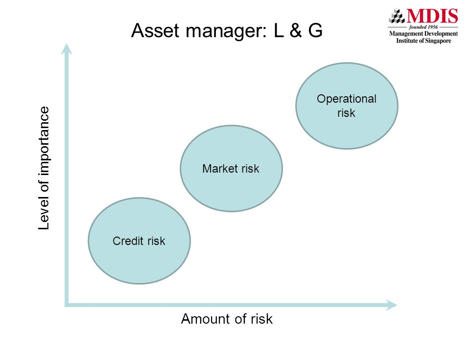Level of importance Asset manager: L & G Amount of risk Market risk Credit risk