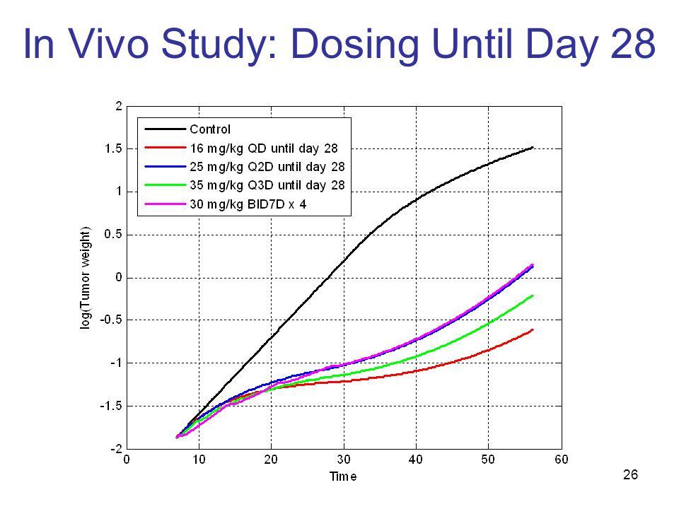 26 In Vivo Study: Dosing Until Day 28