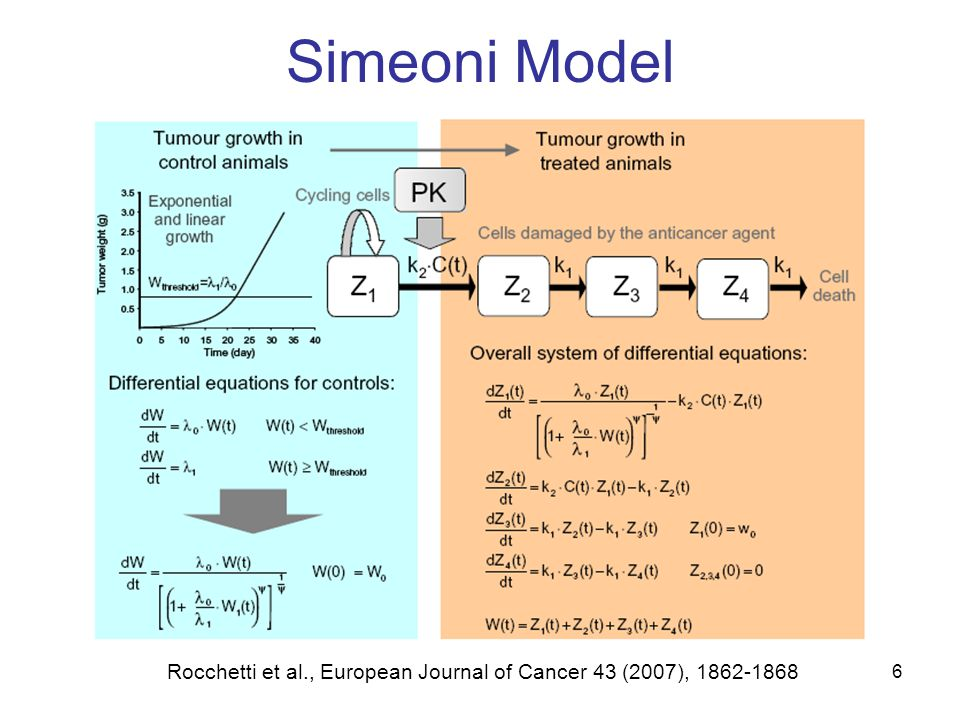 6 Simeoni Model Rocchetti et al., European Journal of Cancer 43 (2007), 1862-1868